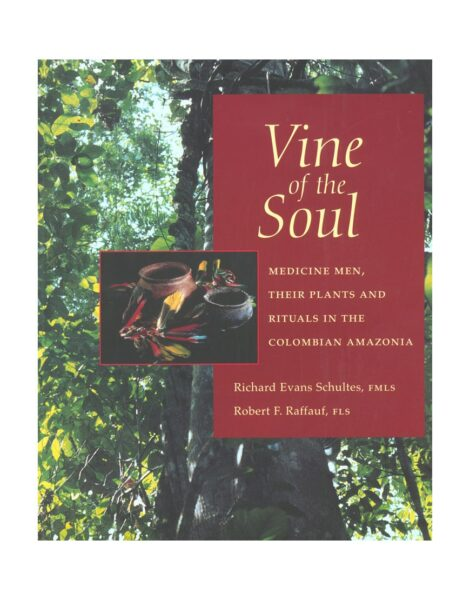 vine-of-the-soul
