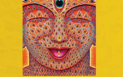 Buddhism, Psychedelics and Visionary Art—Discussion and Book Launch of Zig Zag Zen