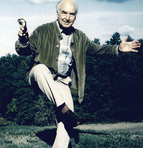albert-hofmann_playful
