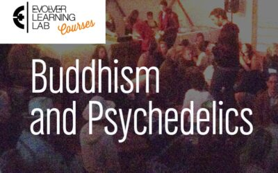 Buddhism Meets Psychedelics: The Course