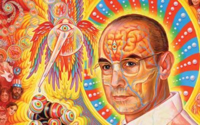 What do Psychedelics, Psychotherapy and Scientific Research Have in Common?