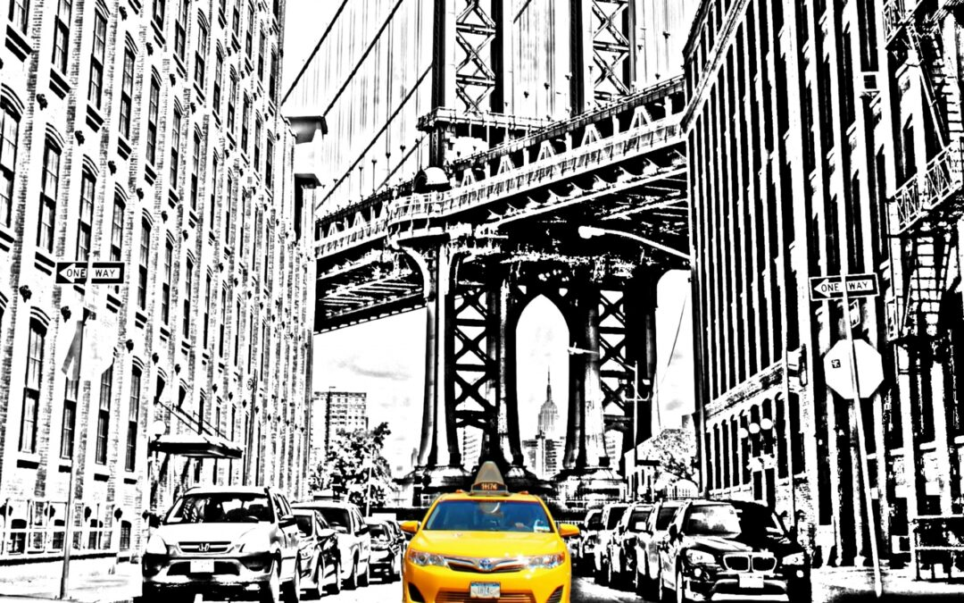 What Can a Taxi Driver from New York Do for the Planet?
