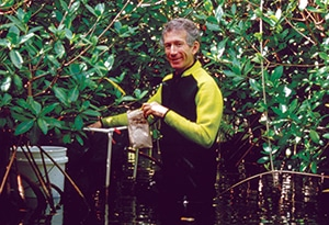 Mark Nelson in the wastewater treatment marsh of Biosphere 2