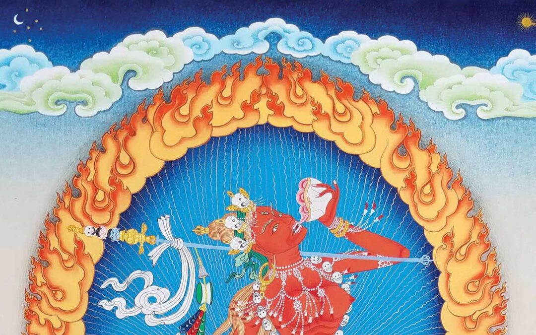 Secret Drugs of Buddhism by Mike Crowley